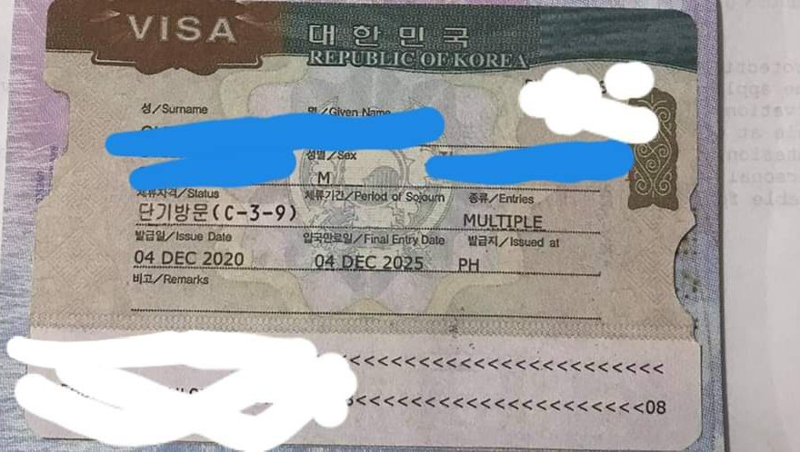 fake Korean visa