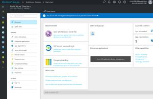 azuread_portal_public_preview_screenshot