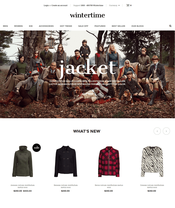 wintertime minimal shopify theme