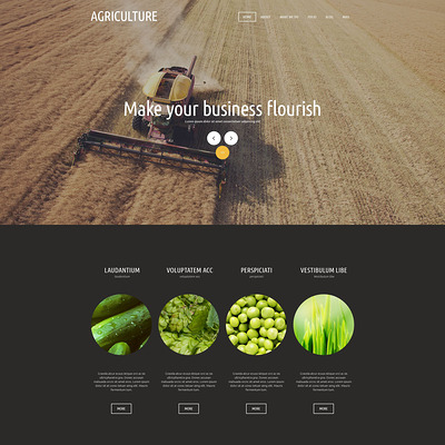 Agricultural Organization Joomla Template (Joomla theme for agriculture and farms) Item Picture