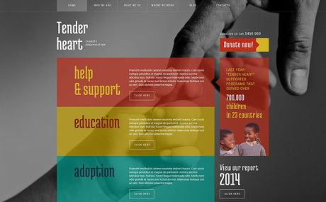 Charity WordPress Theme (charity WordPress theme) Screenshot