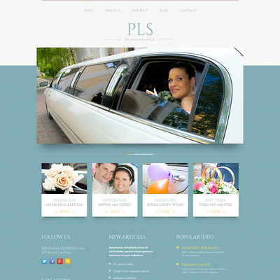 Limousine Services Responsive WordPress Theme (WordPress theme for wedding professionals) Item Picture