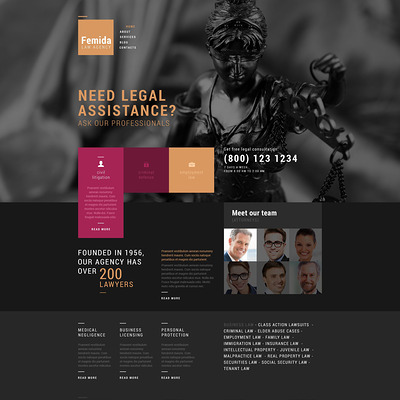 Public Justice Agency WordPress Theme (WordPress theme for lawyers and law firms) Item Picture