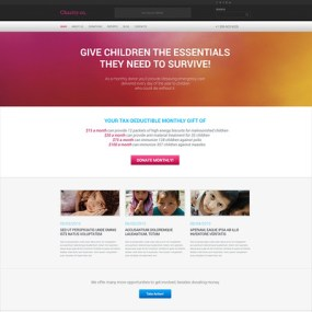 Simple Charity WordPress Theme (charity WordPress theme) Item Picture
