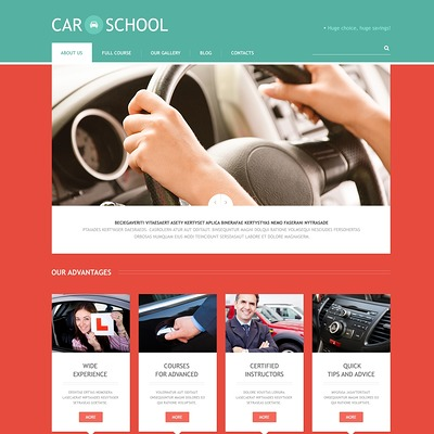 Traffic School Responsive WordPress Theme (education WordPress theme) Item Picture