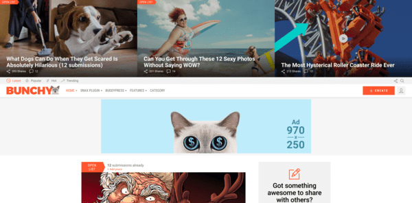 Bunchy (viral WordPress theme with frontend submission) Item Picture