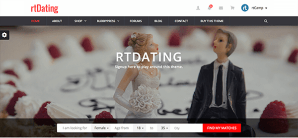 rtDating (WordPress theme) Item Picture