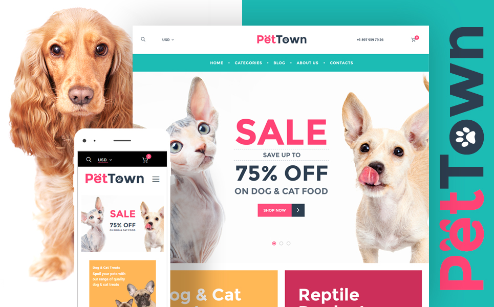PetTown Pet Store