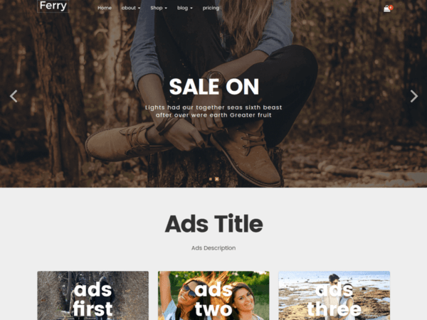 Ferry (music store WordPress theme) Item Picture