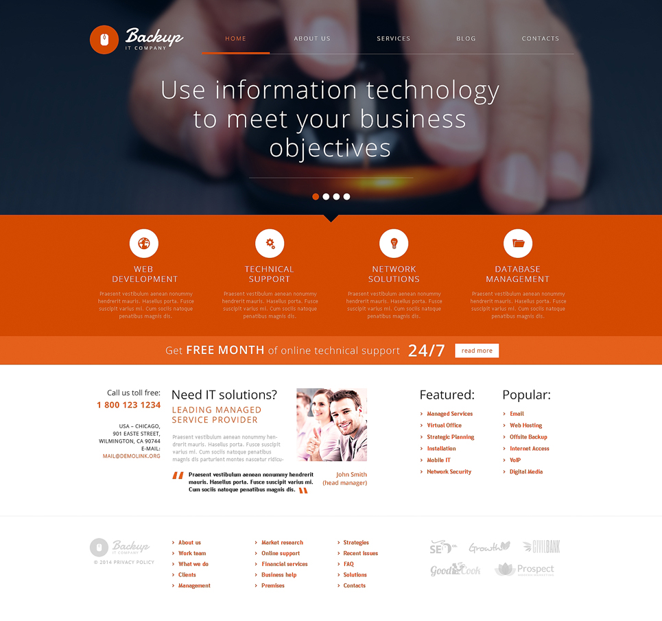 Accounting Website (website theme) Item Picture