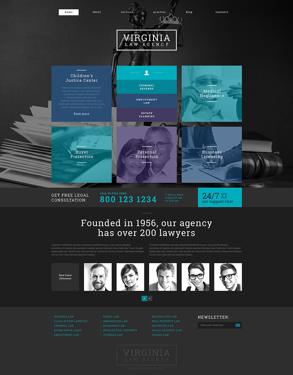 Law Firm (WordPress theme) Item Picture