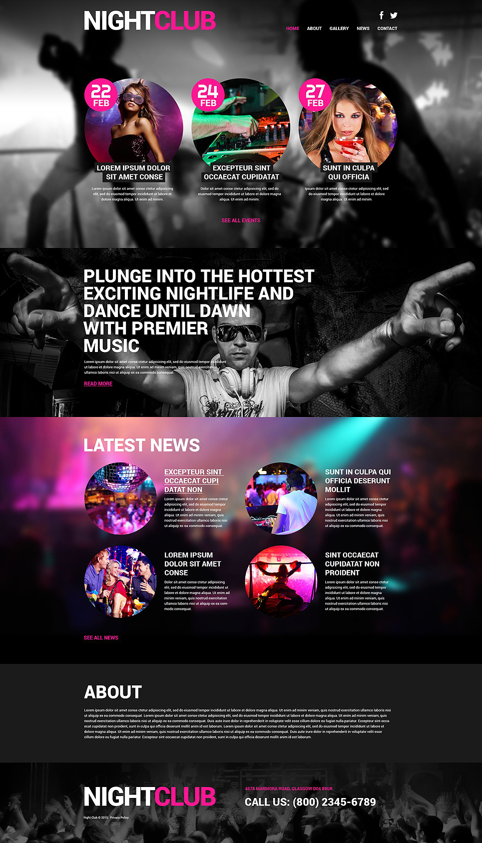 Night Club Euphoria (website theme) Item Picture