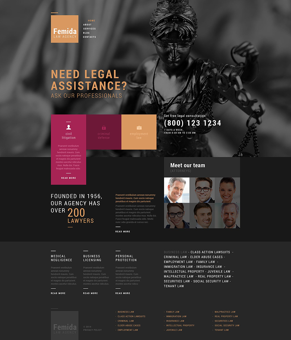 Public Justice Agency (WordPress template) Item Picture