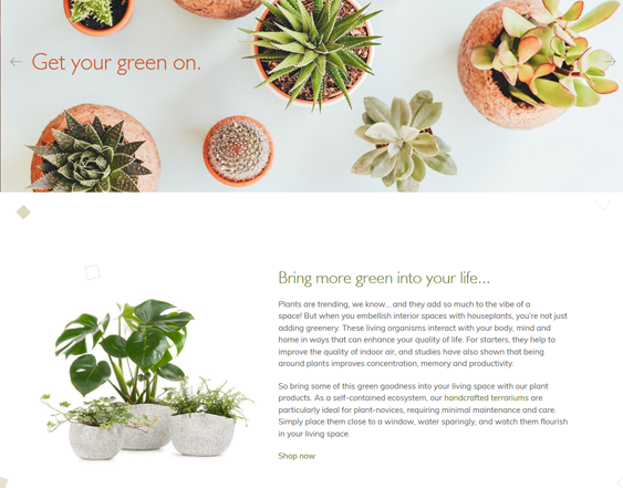 best shopify themes for selling plants stores feature