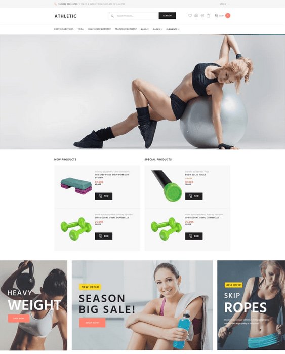 gym fitness woocommerce themes