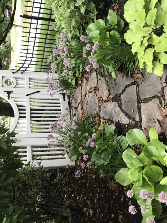 Perennial flowers and outdoor gate