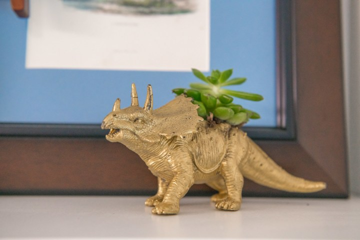 Dino planter