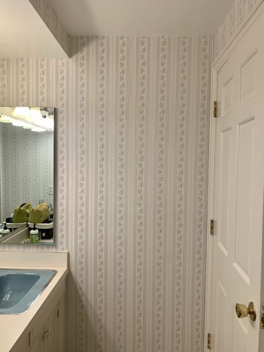 How to update a tired, retro bathroom  for more style and function | Building Bluebird #retro #masterbathroom #vintage