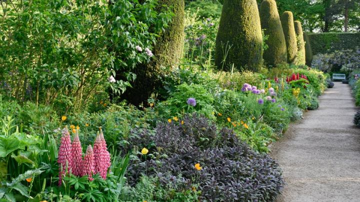 Hidcote long borders are a geat example of the English gardens so many of us work to achieve | Building Bluebird #cottagecore