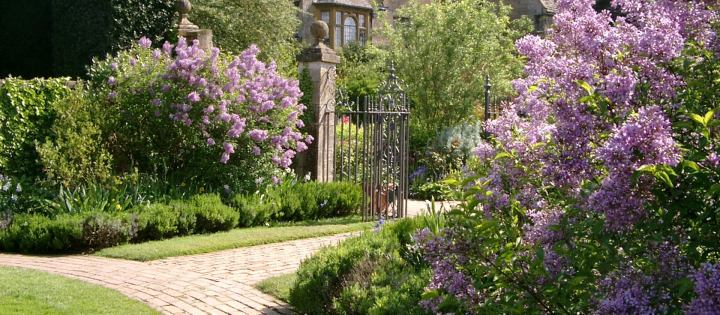 The garden at Hidcote with lilac bushes, stone bathways and an iron fence | Building Bluebird #cottagecore #grandmillennial