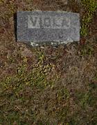 Cemetery 25 Cook Viola