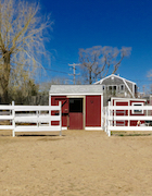 Brown 22 Horse Barn (1).jpg