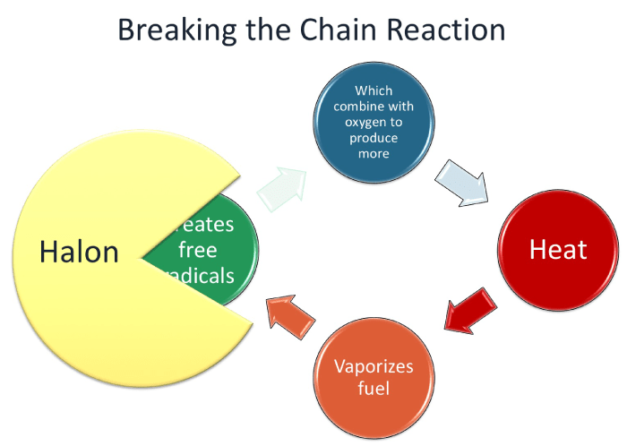 Halon breaks the chain reaction of fire by stopping free radicals