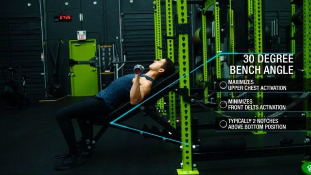 Push pull legs incline barbell bench press angle