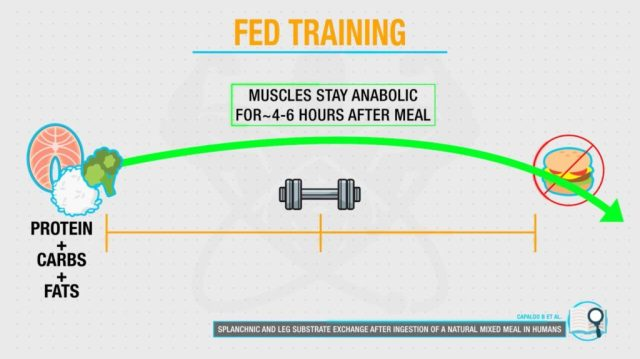 Fed training and period of anabolic window
