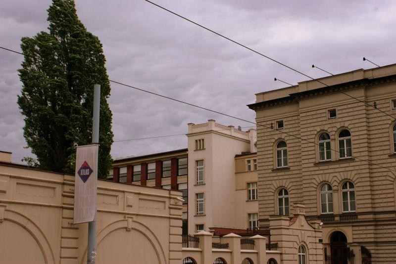Pałac Roberta Biedermanna