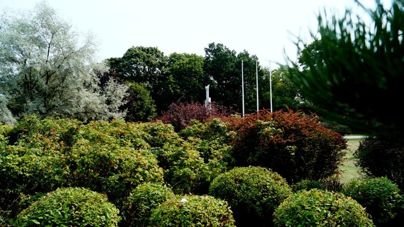 Zieleń w Parku Helenów