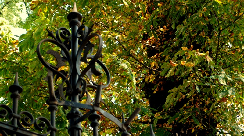 Bogato zdobione ogrodzenie zakładów