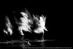 The Secret Dance by Secret Dancer | @albertrahmanp | Padangpanjang | 2011