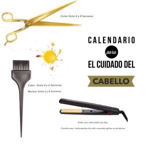 Beauty Day: Calendario para el cuidado del Cabello