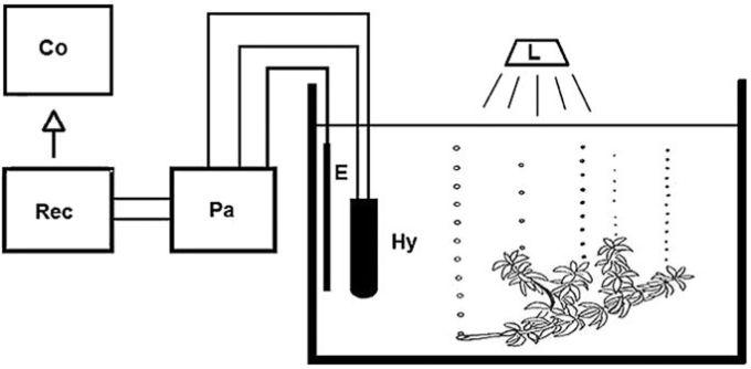 Alat-alat laboratorium biologi