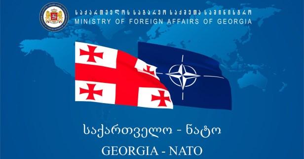 Gruzija NATO