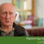 Videó: A pajzsmirigy betegségei