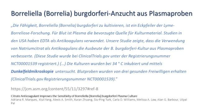 Borrelia Anzucht