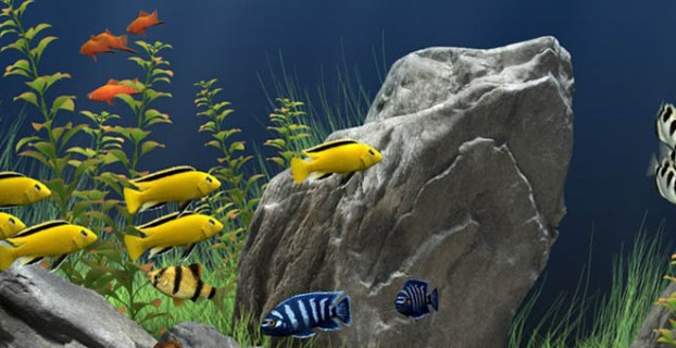 ikan yang hidup di air tawar