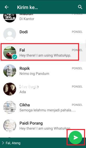 pilih kontak lalu klik kirim