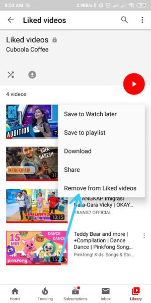 Hapus list Video yang di like