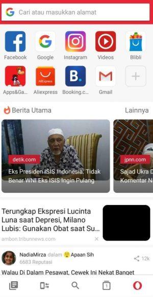 Antarmuka Opera Browser