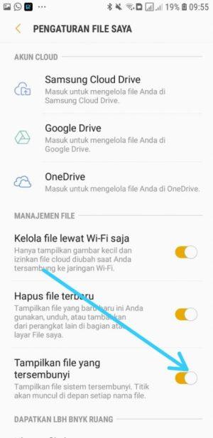 hide file aktif