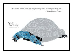 Tort the tortoise in colour
