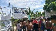 Davao del Norte farmers assert right to banana plantation land
