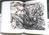 pettibon-book-16