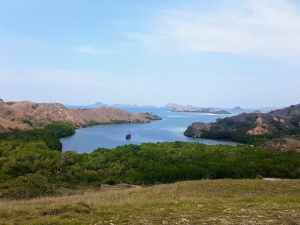 Pula Rinca hilltop view