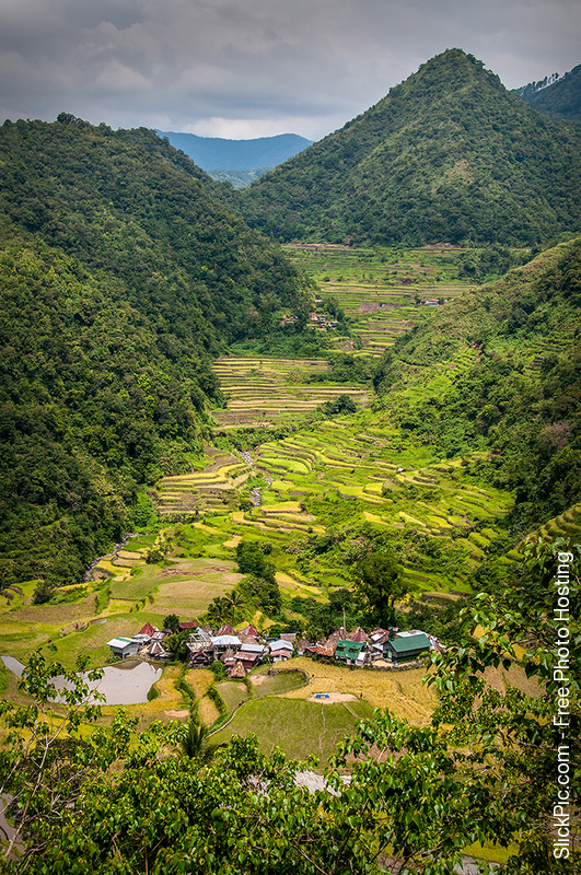 Rice_Terraces_04