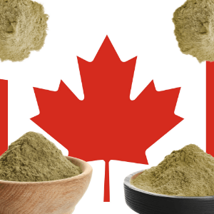 Canadian Hemp Protein