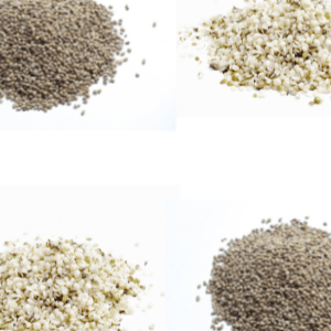 Conventional Seeds